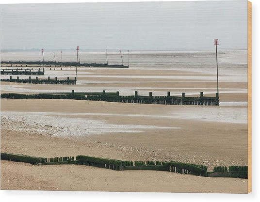 Coastal Defences Wood Print by Colin Cuthbert/science Photo Library