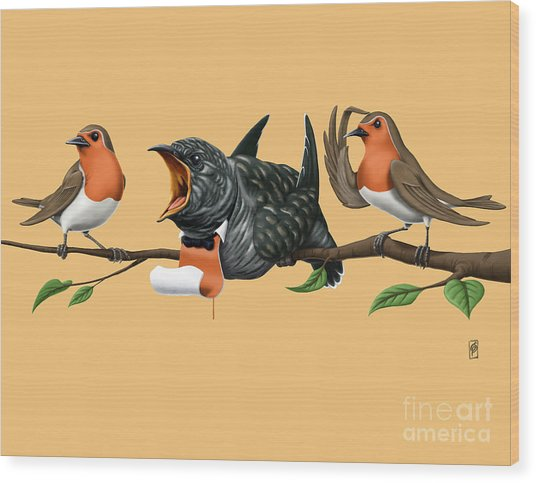 Cock Robin Colour Wood Print