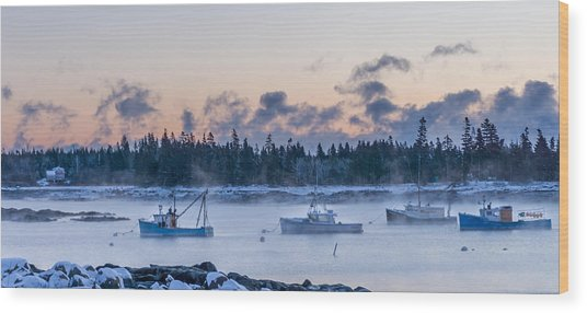 Cold Day In Maine  Wood Print