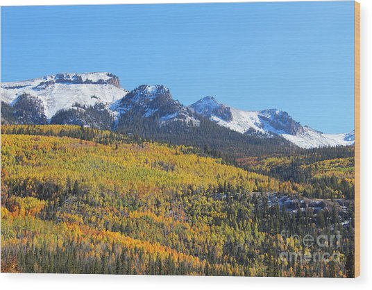 Colorado Autumn Wood Print