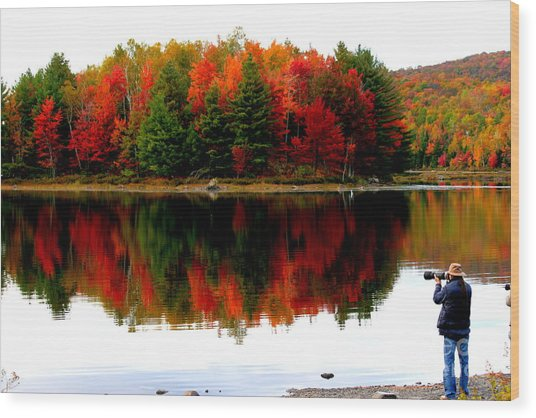 Colorful Reflection Wood Print by Arie Arik Chen