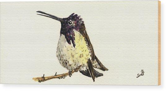 Costa S Hummingbird Wood Print