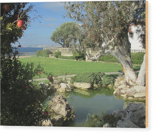 Courtyard On The Cliffs Wood Print