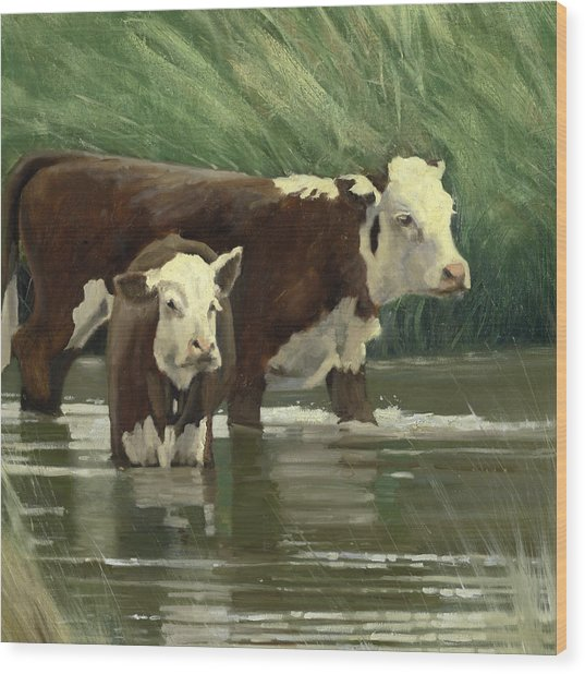 Cows In The Pond Wood Print