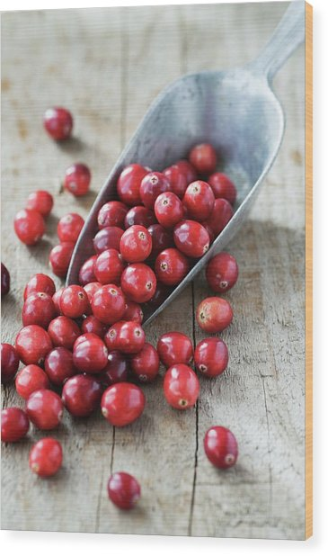 Cranberries Wood Print by Gustoimages
