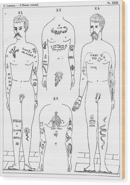 Criminal Tattoos Wood Print by Science Photo Library