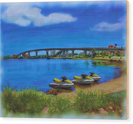 Wood Print featuring the painting Do You Sea Doo by Deborah Boyd