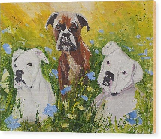 Dogs Painting Fine Art By Ekaterina Chernova Wood Print