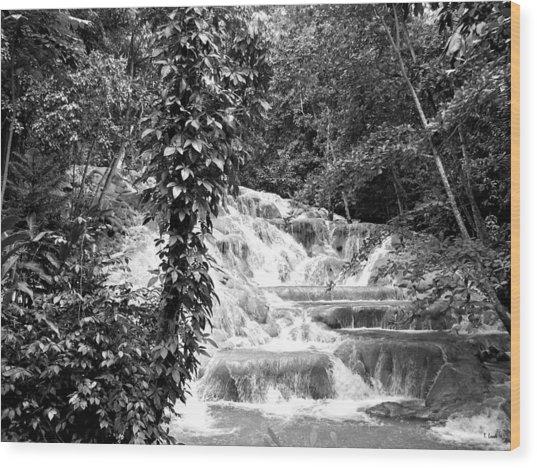 Dunn's River Wood Print by Thomas Leon