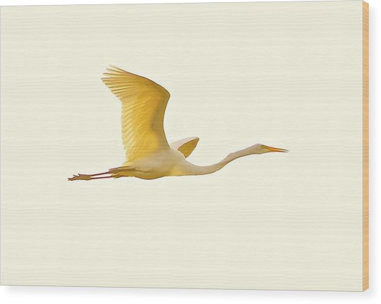 Egret In Flight Wood Print