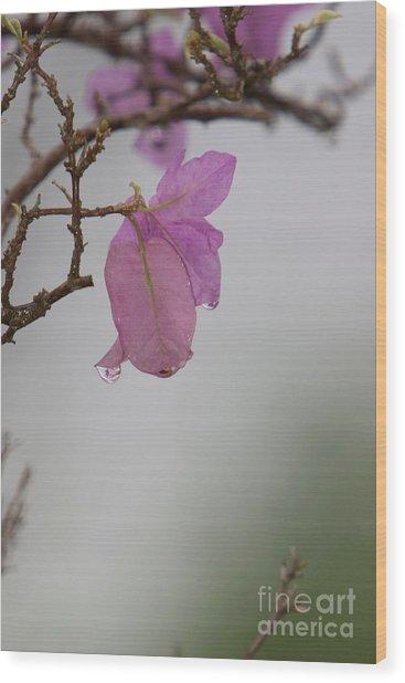 Elegance Of Nature Wood Print