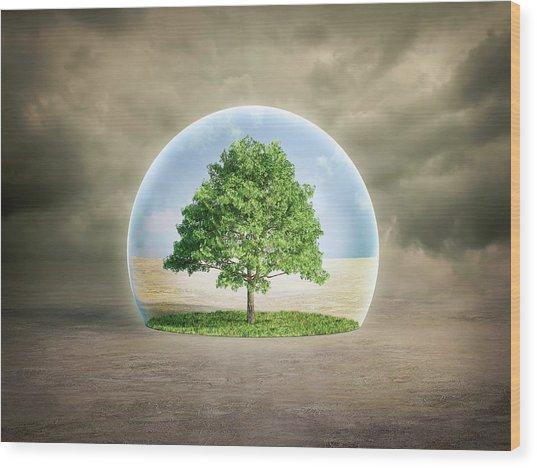 Environmental Protection Wood Print by Andrzej Wojcicki/science Photo Library