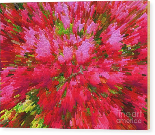 Explosion Of Spring Wood Print