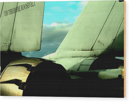 F-14 Tomcat Wood Print by Maxwell Amaro