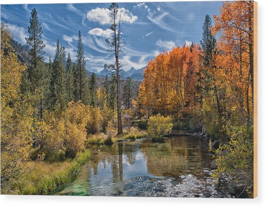 Fall At Bishop Creek Wood Print