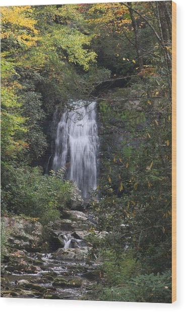 Fall In The Smokies Wood Print