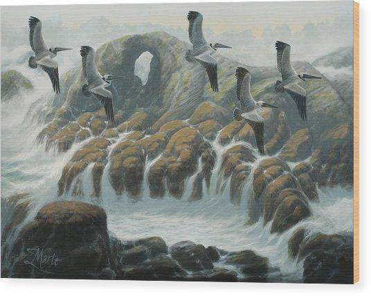 Farallon Pelicans Wood Print by Marte Thompson