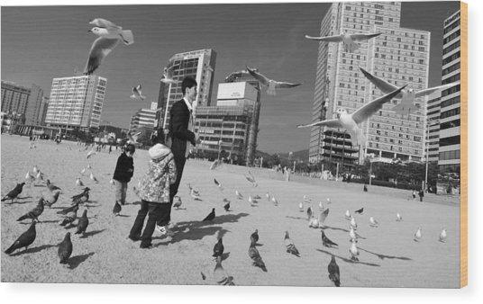 Feed The Birds Wood Print