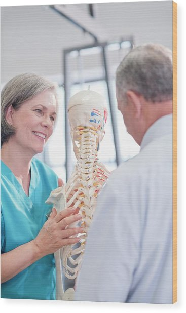Female Chiropractor Showing Anatomical Model Wood Print by Science Photo Library