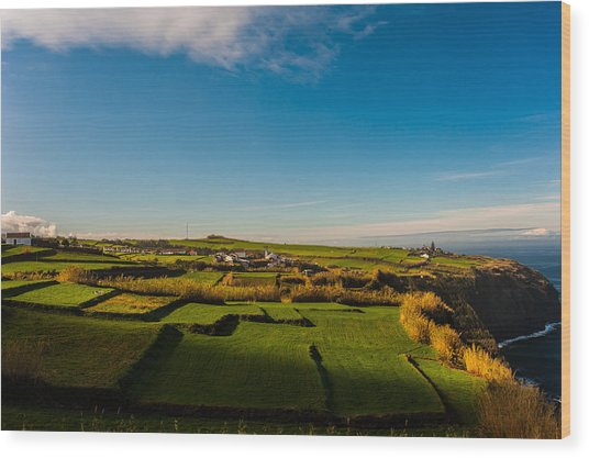 Fields Of Green And Yellow Wood Print