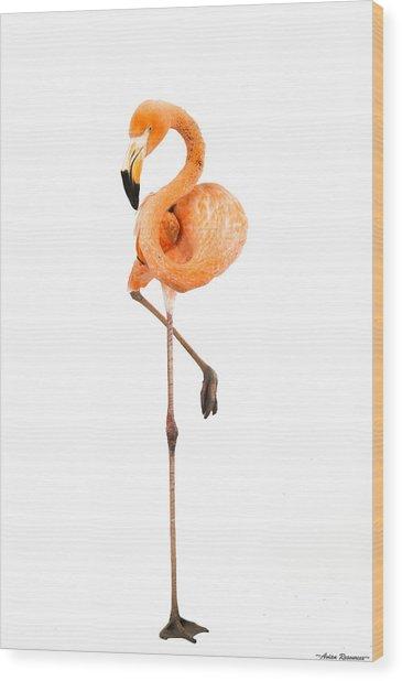 Flamingo On White Wood Print