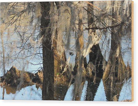 Flint River 36 Wood Print
