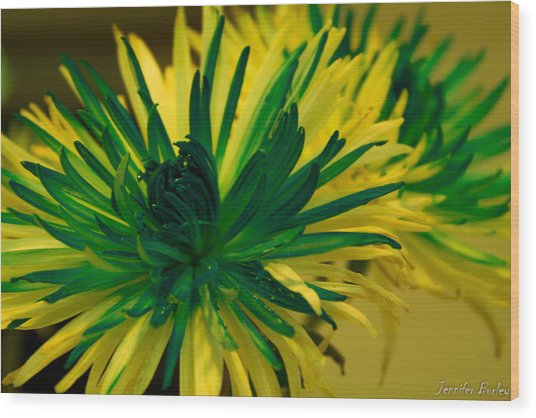 Flower Wood Print by Jennifer Burley