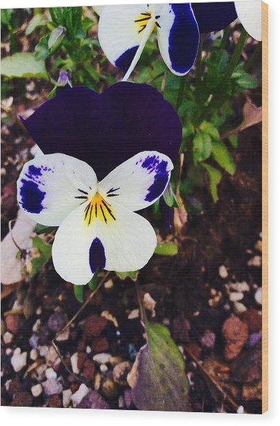 Flower Wood Print by Niki Mastromonaco