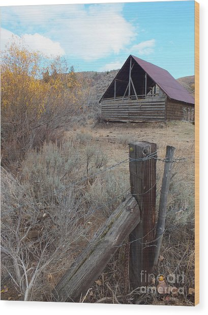 Forgotten Barn Wood Print by Kimberly Maiden
