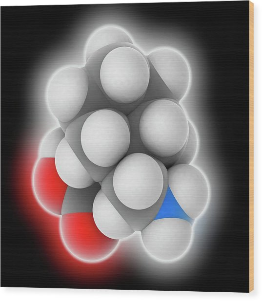 Gabapentin Drug Molecule Wood Print by Laguna Design