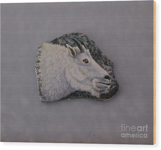 Glacier Park Mountain Goat Wood Print
