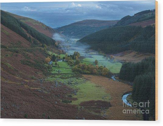 Glenmacnass 2 Wood Print by Michael David Murphy