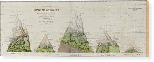 Global Botanical Geography Wood Print