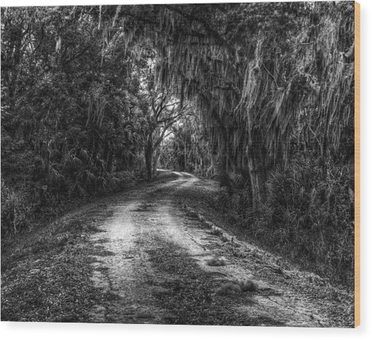 Going Home Wood Print by David Mcchesney