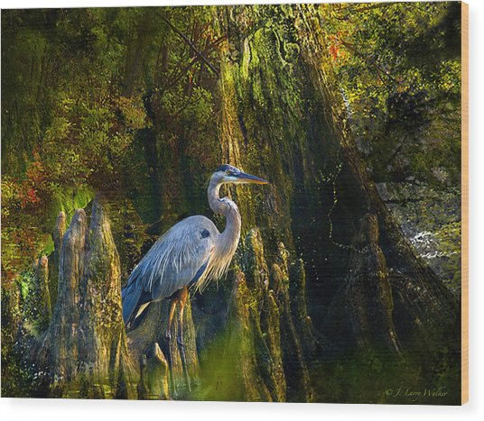 Great Blue Heron Slowly Strolling Wood Print