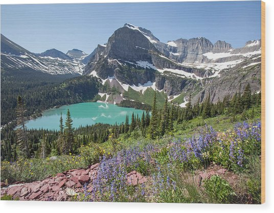 Grinnell Lake Flowers Wood Print
