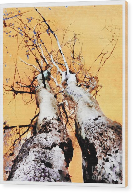 Growing Old Together  Wood Print