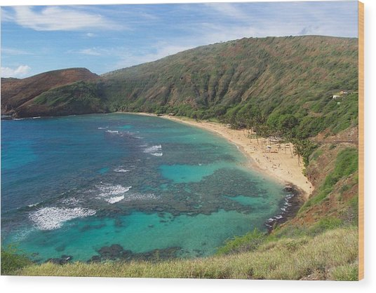 Hanauma Bay Oahu Hawaii Wood Print