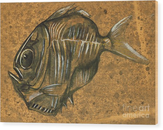 Hatchet Fish Wood Print