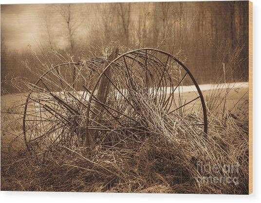 Hay Rake Wood Print