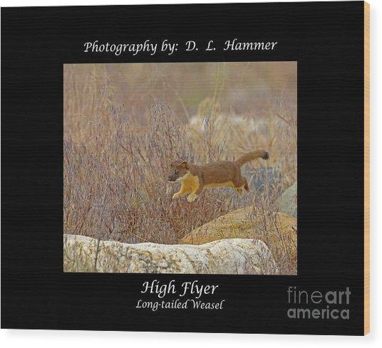 High Flyer Wood Print by Dennis Hammer
