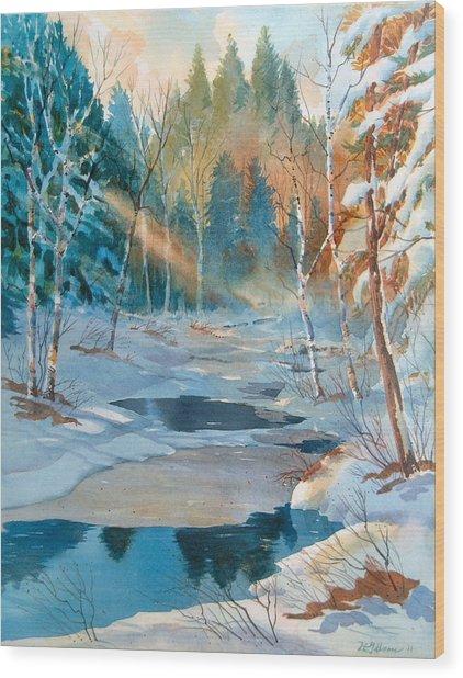 Hinchinbrooke Creek In Spring Wood Print