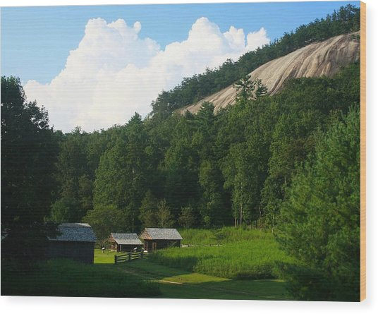 Historic Mountain Homestead Wood Print