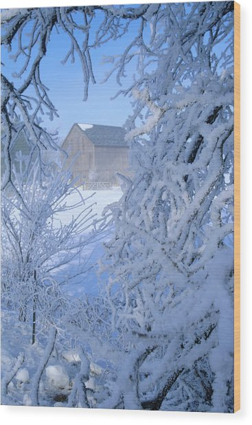 Hoarfrost Farm Wood Print