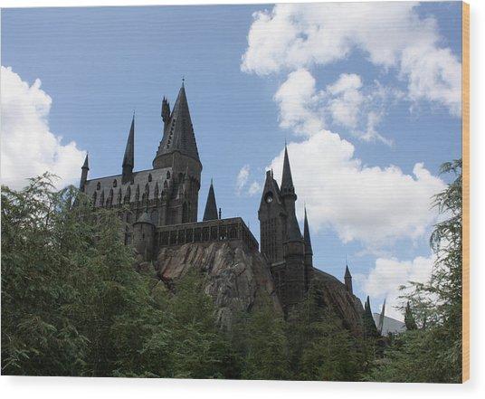Hogwarts Castle Wood Print