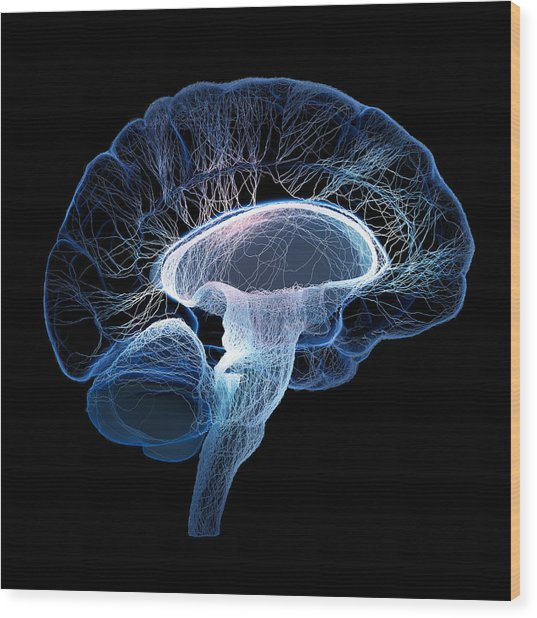 Human Brain Complexity Wood Print