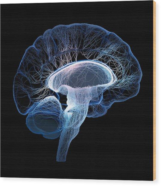 Human Brain Complexity Wood Print