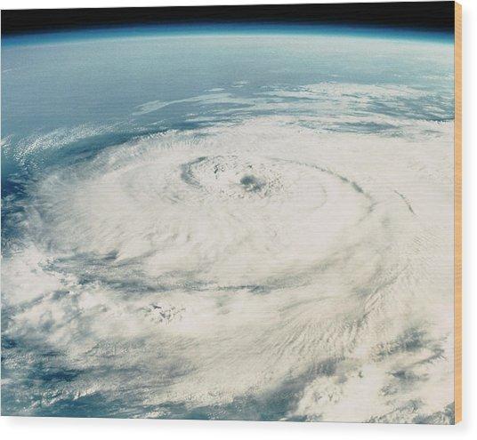 Hurricane Elena Wood Print by Nasa/science Photo Library