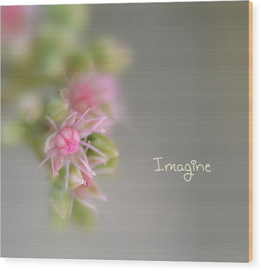 Imagine Now Wood Print