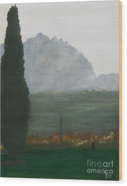 In The Morning Mist Wood Print by Heather Chandler